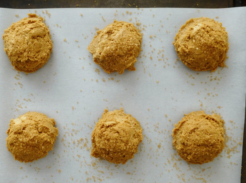 ginger molasses cookie dough